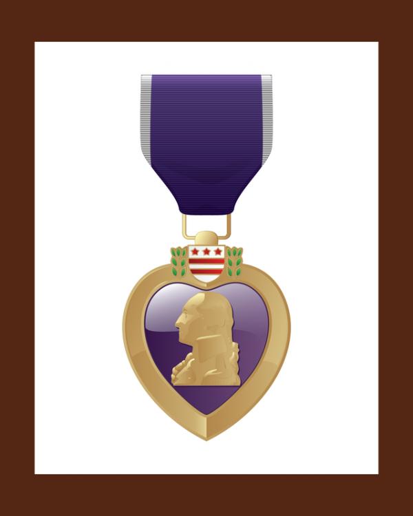 Purple Heart US Navy